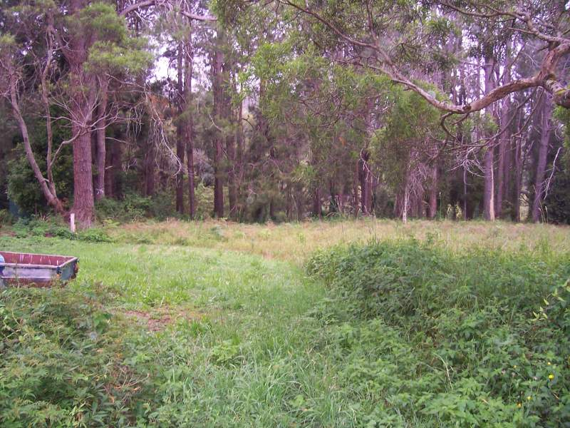 Address available on request, Springbrook, Qld 4213