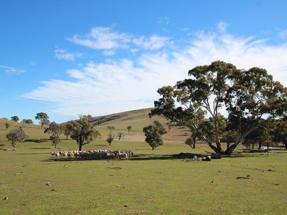 201 Gallymont Road, Mandurama, NSW 2792