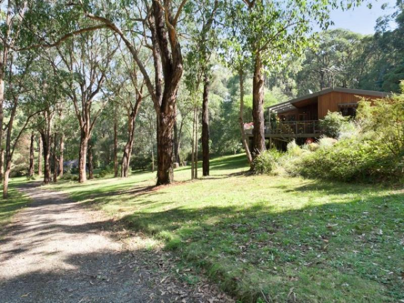 5 Pine Avenue, Red Hill, Vic 3937