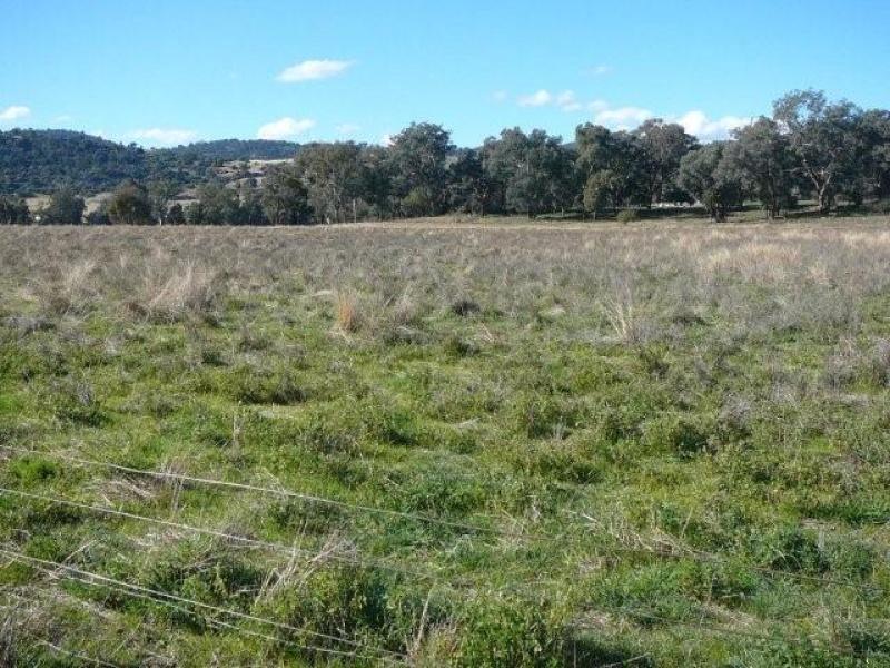 Glenrock, Reids Flat, NSW 2586