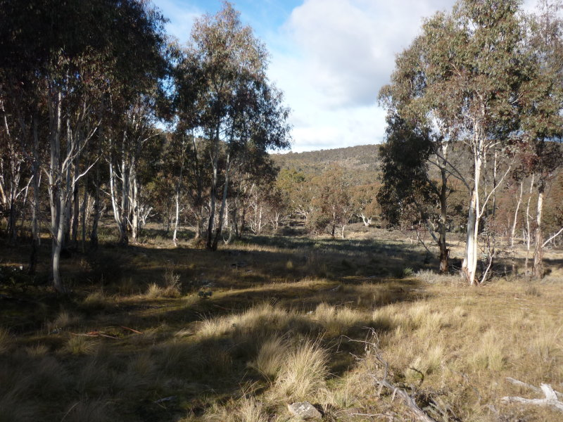 Lot 128, Ashvale Road, Adaminaby, NSW 2629