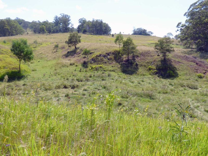 Lot 1 Whichello Rd, Whichello, Qld 4352