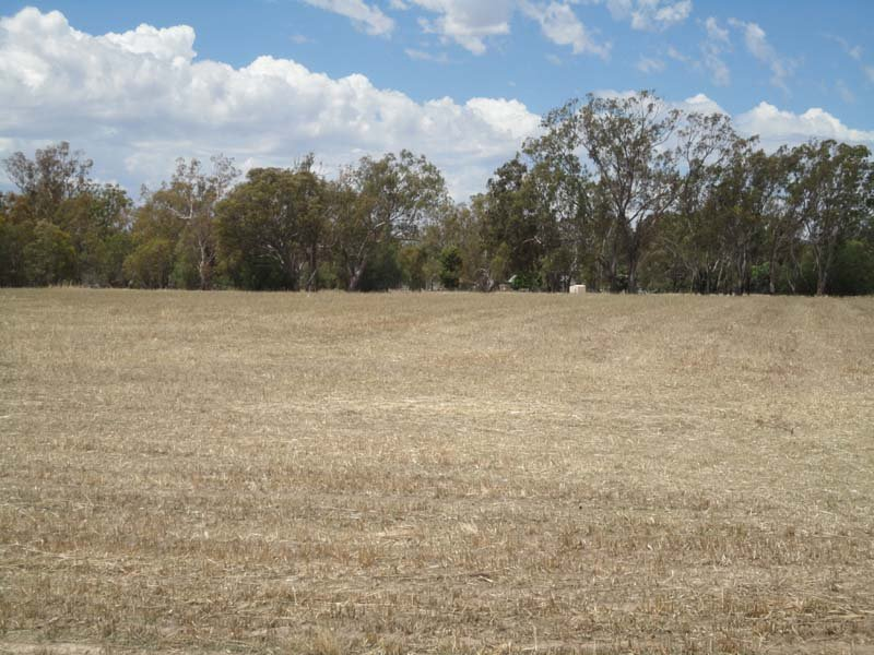 Lot 5 McDiarmids Road, Violet Town, Vic 3669