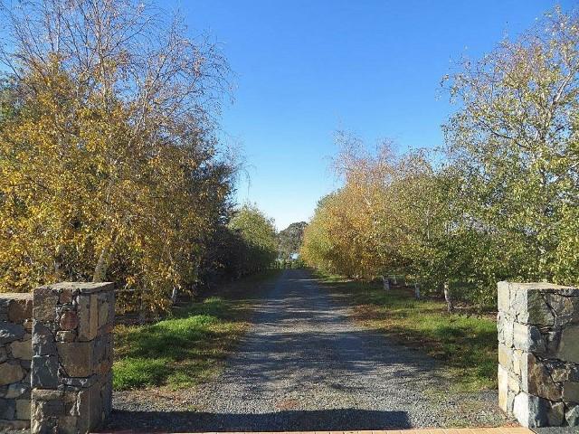 5 Southdown Avenue, Murrumbateman, NSW 2582
