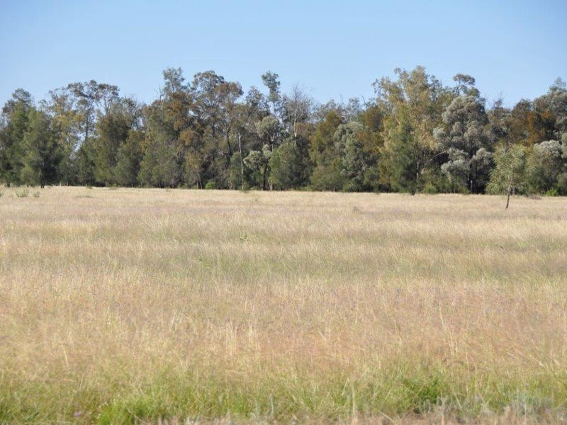 """Cardiff"" Bulrush-Billabong Rd, Miles, Qld 4415"
