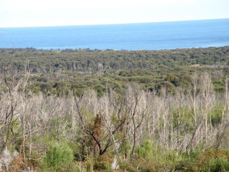 Lot 25 Thunder & Lightning Road, Cape Barren Island, Tas 7257