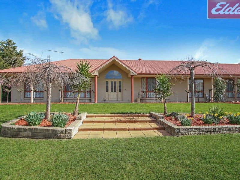 59 The Avenue, Thurgoona, NSW 2640