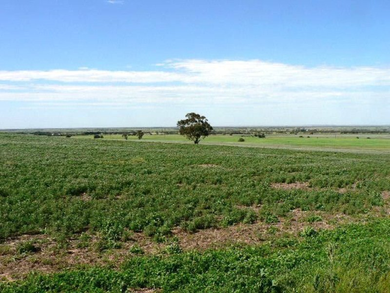 Lot 456 Tucker Road, Strathalbyn, SA 5255