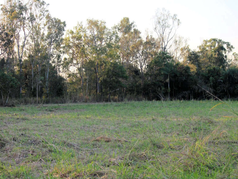 Lot 9, 9  Bogottos Road, Trebonne, Qld 4850