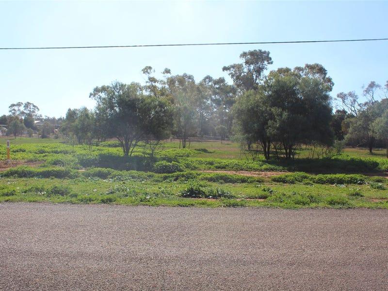21 Singleton Drive, Cobar, NSW 2835