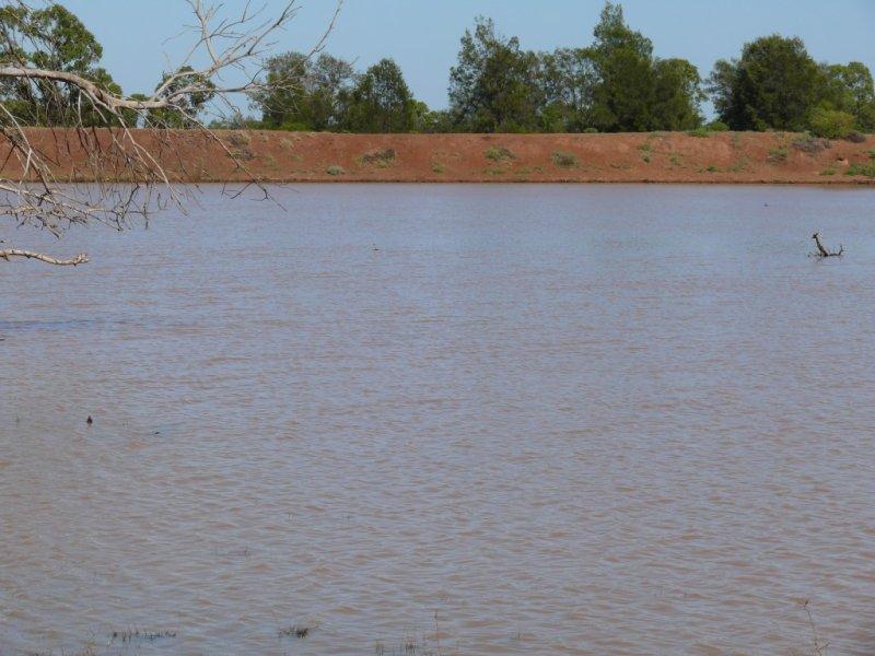 """"""" Basin Downs"""", Surat, Qld 4417"""