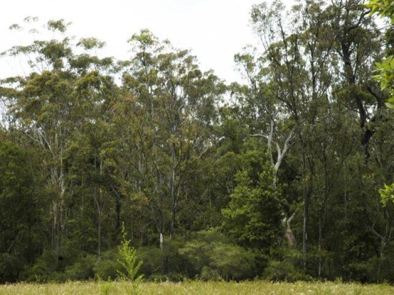 125 News Road, Werombi, NSW 2570