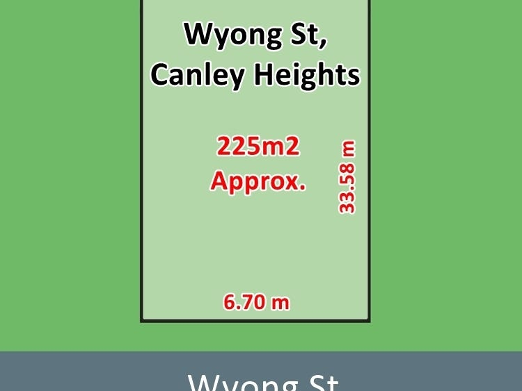 45B Wyong Street, Canley Heights, NSW 2166