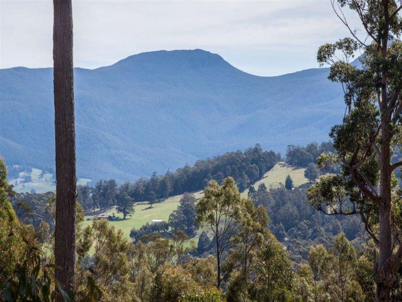 106 Vinces Saddle Road, Lower Longley, Tas 7109