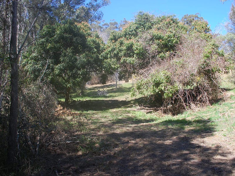 5, 849  Grassy Head Road, Way Way, NSW 2447