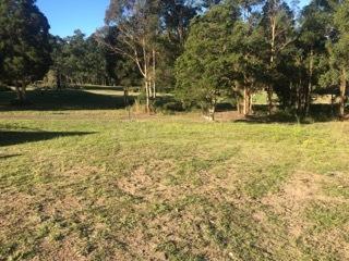 19 Illusions Court, Tallwoods Village, NSW 2430