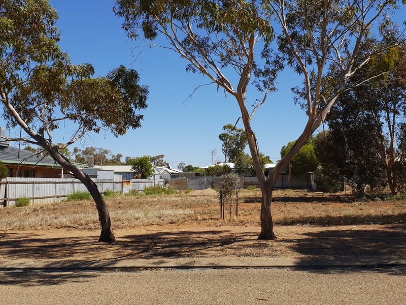 54 Third Street, Napperby, SA 5540