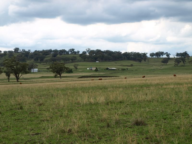 Nioka, Willow Tree, NSW 2339