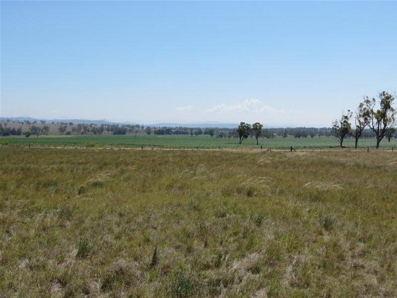 21 Big Jacks Creek Road, Willow Tree, NSW 2339