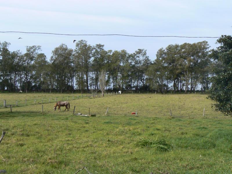 82 Border Street, Eraring, NSW 2264
