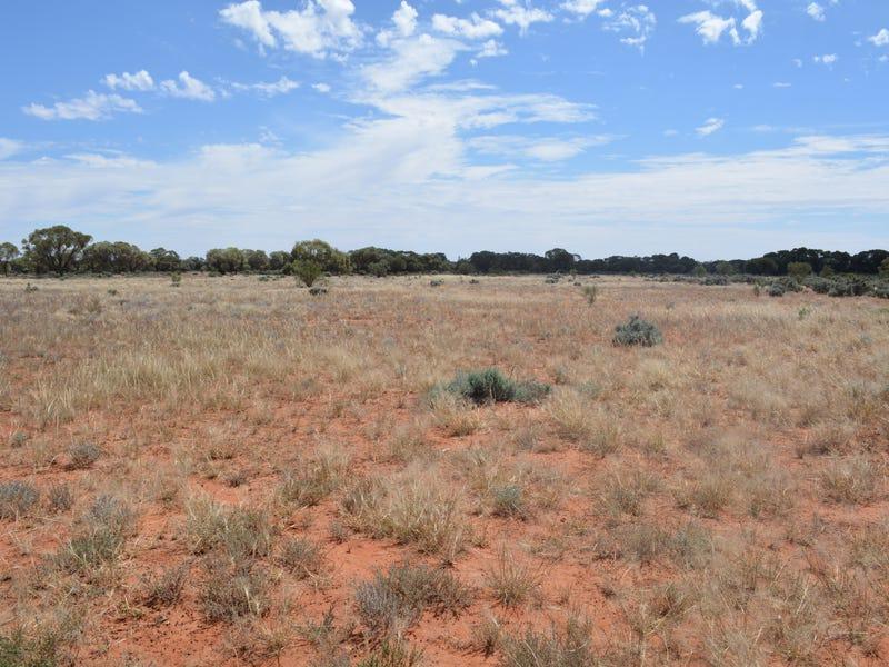 Lot 1826 Teryawynia Coolaminyah Road, Ivanhoe, NSW 2878