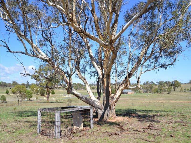 19 Grevillea Grove, Rylstone, NSW 2849