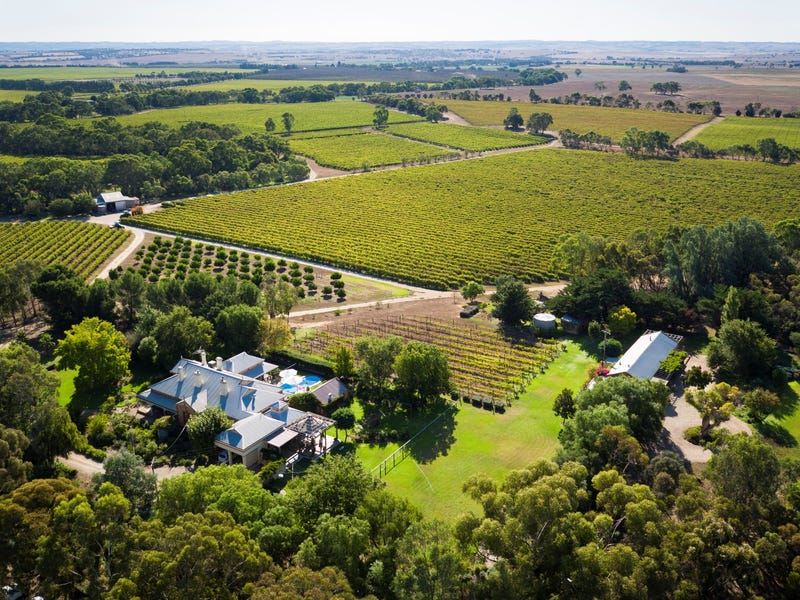 Peechabella Vineyard, 891 Meechi Road, Langhorne Creek, SA 5255