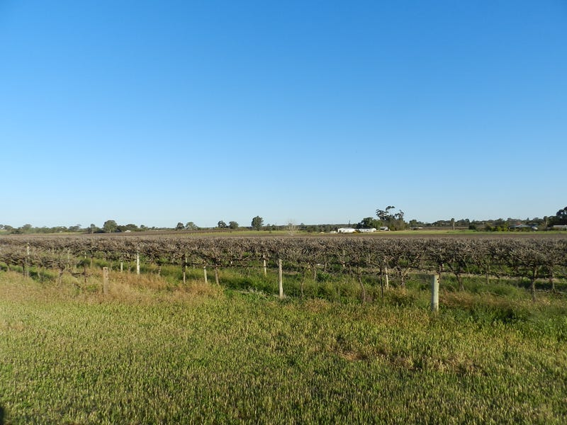 433 & 818 Hoffman Road, Loveday, SA 5345