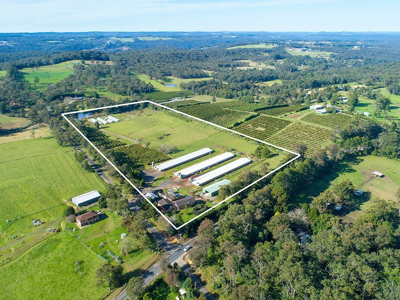 10 Lillicrapps Road, Mangrove Mountain, NSW 2250