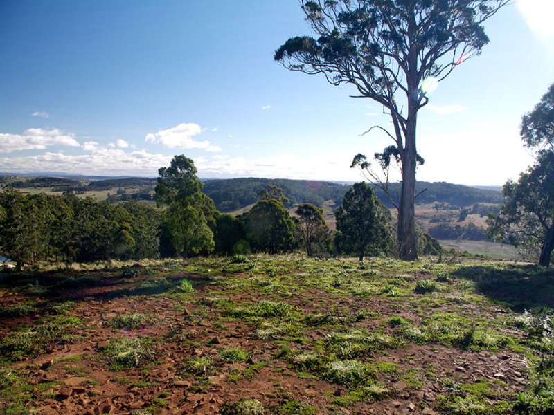 Lot 590, Dragon Swamp Road, Cathcart, NSW 2632