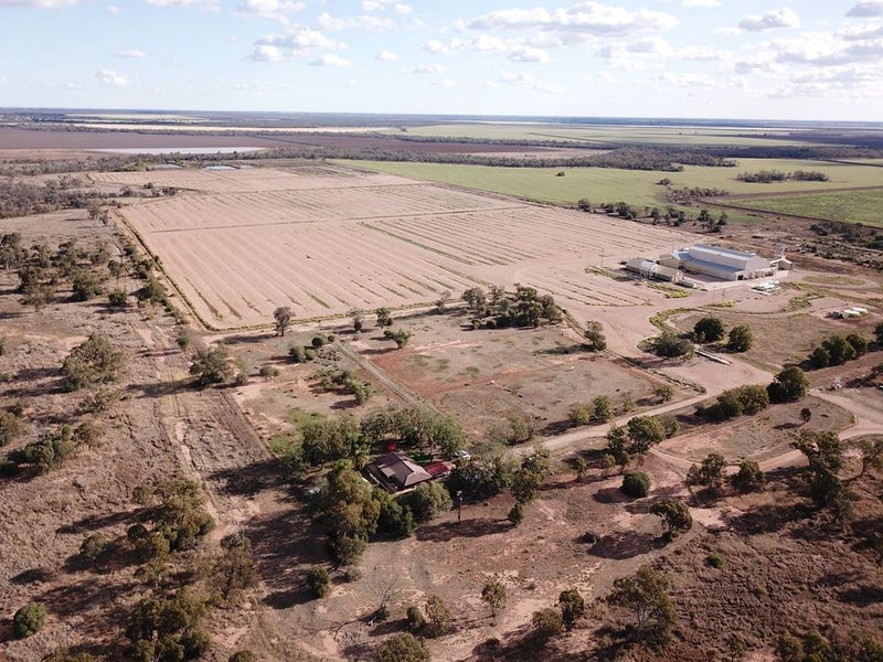 1769 Carnarvon Highway, Moree, NSW 2400