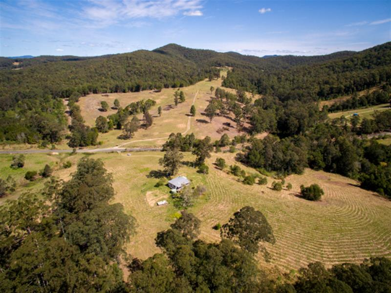 884 Bellangry Road, Mortons Creek, NSW 2446