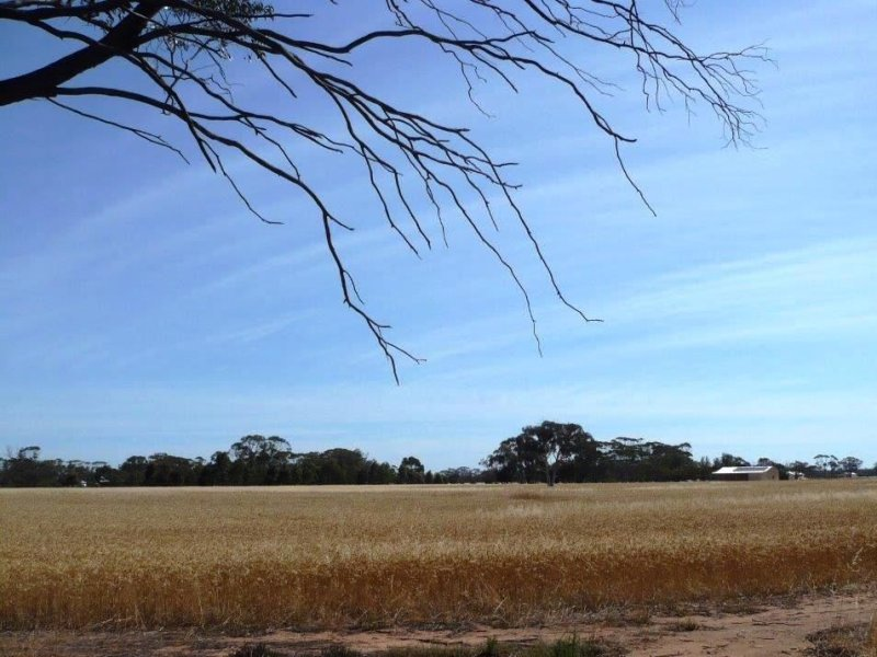Address available on request, Moora, WA 6510