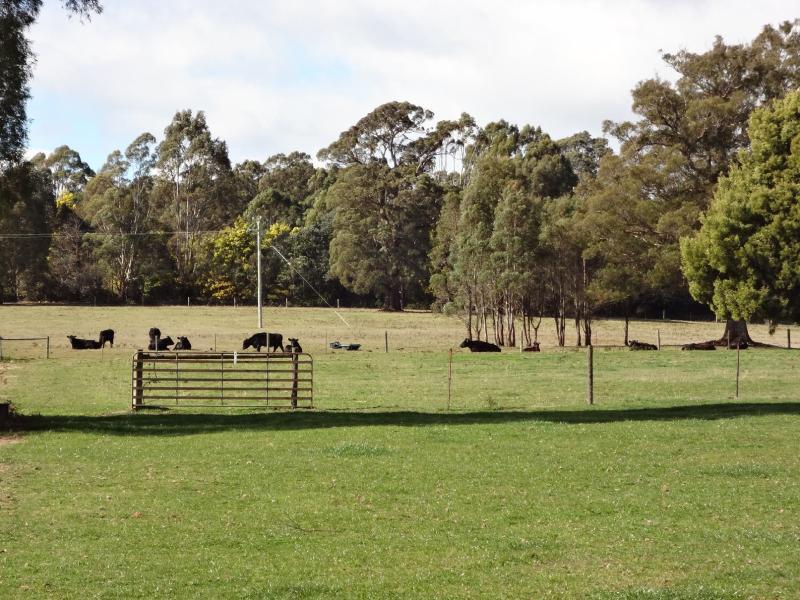 30 Hodgetts Road, Rosevale, Tas 7292