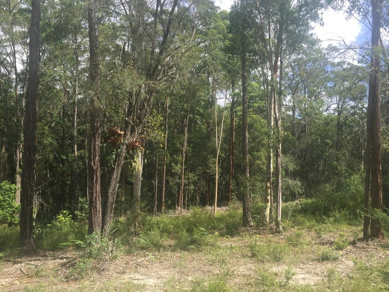 72 Emu Creek Road, Crawford River, NSW 2423