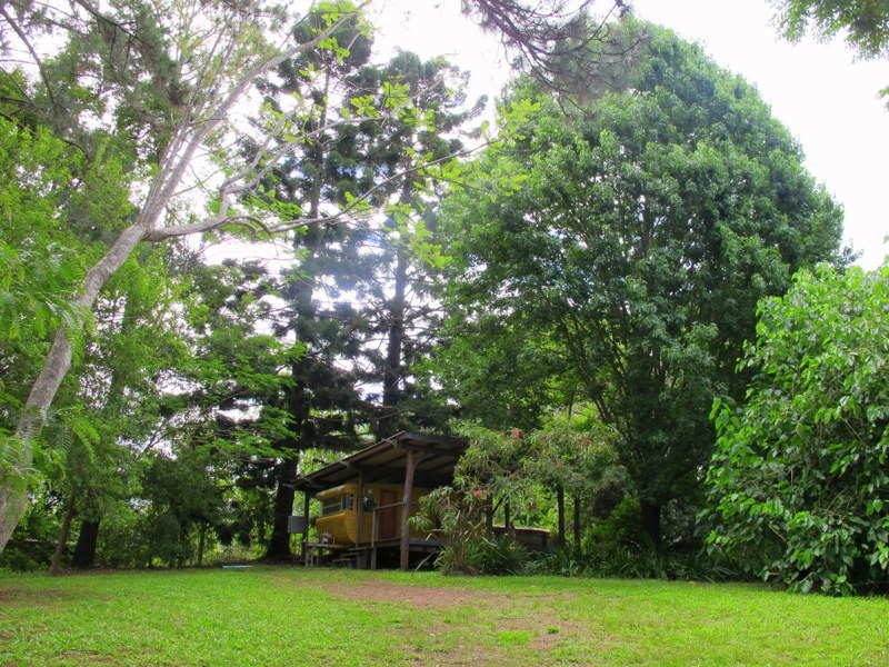 48A Wheatley St, Bellingen, NSW 2454