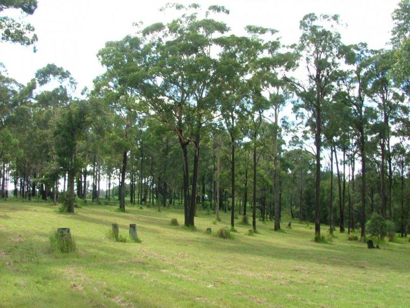Lot 244 Lake Russell Drive, Emerald Beach, NSW 2456