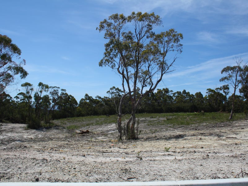 6 Prior Crescent, Heybridge, Tas 7316