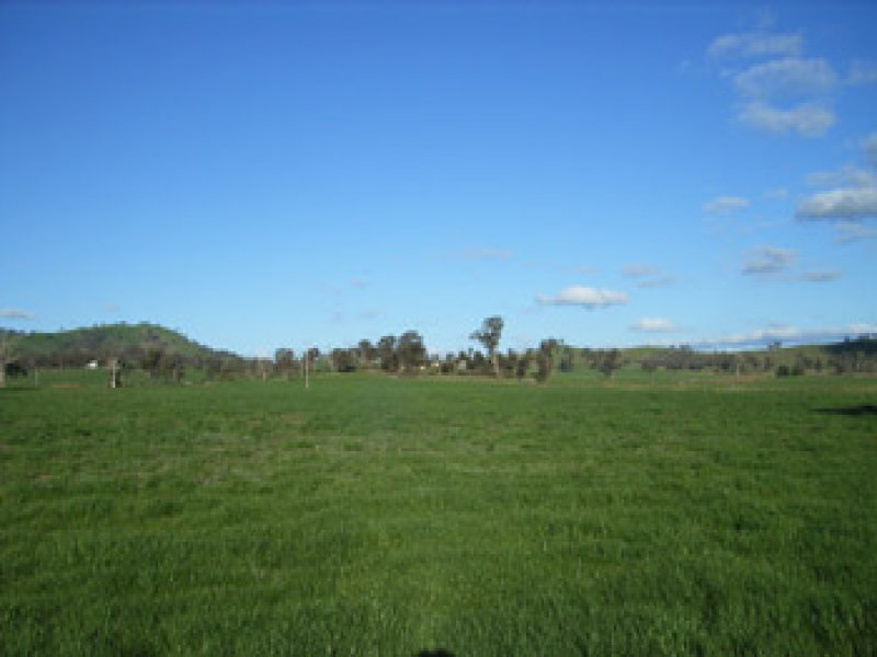 Address available on request, Nangus, NSW 2672