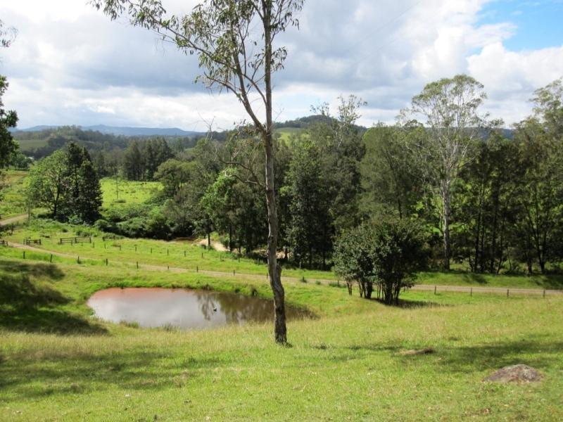 100 & 101 Capeen Creek Road, Old Bonalbo, NSW 2469
