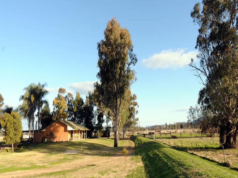 Oregan Wean Road, Gunnedah, NSW 2380