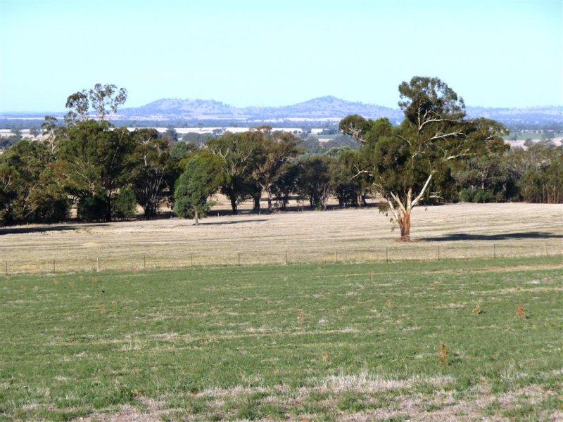 253 Stein Road, Henty, NSW 2658