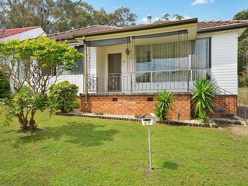 17 Pasedena Crescent, Beresfield, NSW 2322