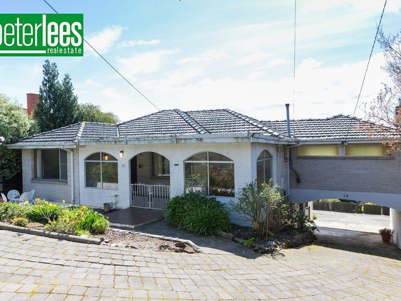 12 Newlands Street, Trevallyn, Tas 7250