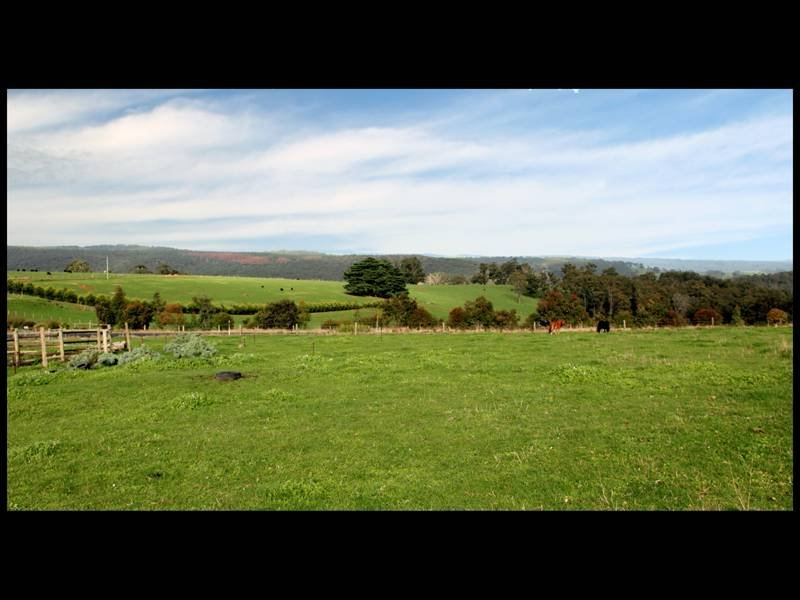 2615 Grand Ridge Road, Hallston, Vic 3953