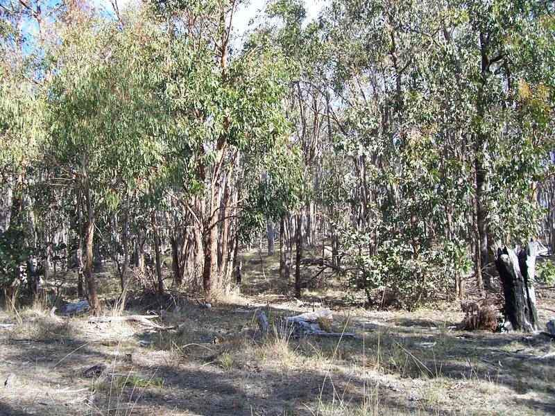 Lot 2 Booths Lane, Baynton, Vic 3444