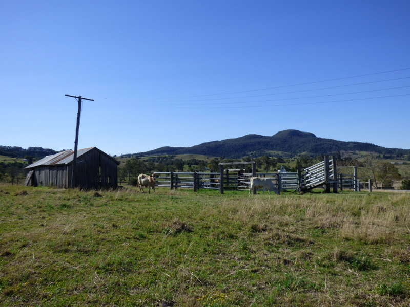 5, Mt Alford Road, Mount Alford, Qld 4310