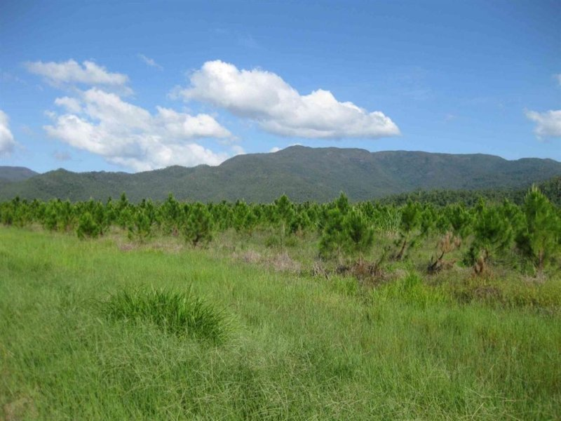 0 Hawkins Creek Road, Ingham, Qld 4850