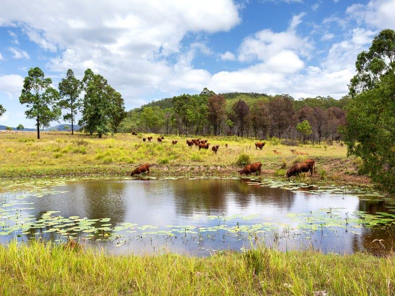 626 Black Flat Lane, Mount George, NSW 2424