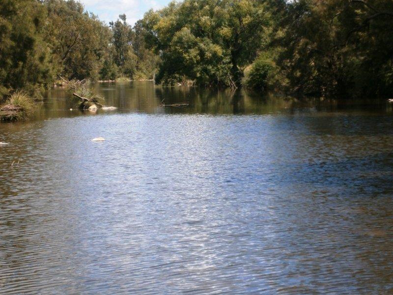 723 Silvermines Rd 'Glencoe', Elsmore, NSW 2360